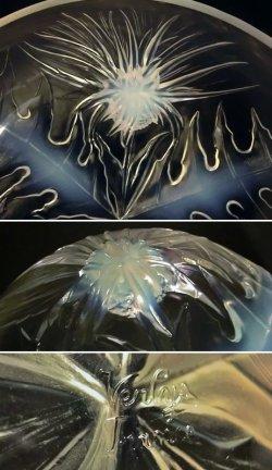 画像5: 【VERLYS】ヴェルリス アザミ文中鉢