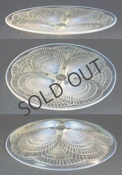 画像2: 【LALIQUE】ルネ・ラリック COQUILLES 大皿